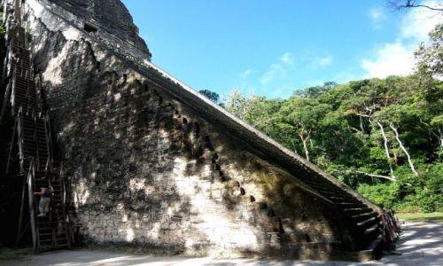 GWATEMALA / brak / Tikal / jedna z wielu