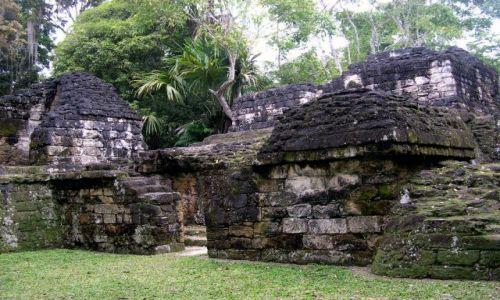 GWATEMALA / brak / Tikal / ruiny i dzungla