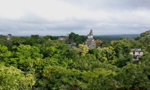 Zdjęcie GWATEMALA / brak / Tikal / panorama Tikal ze szczytu Temple V