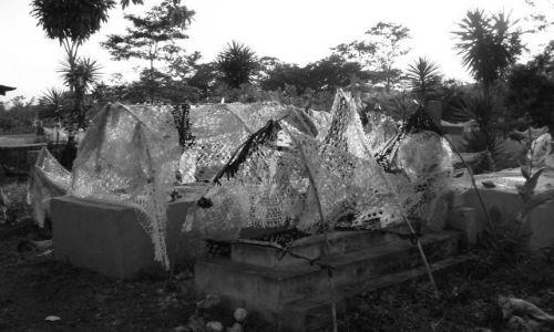 Zdjecie GWATEMALA / brak / El Peten /Gwatemala/ / Na cmentarzu w Gwatemali
