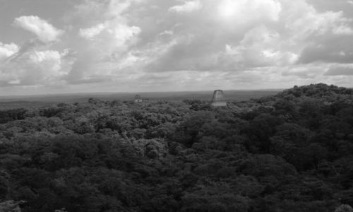 GWATEMALA / brak / Tikal /Gwatemala/ / Tikal - widok og�lny