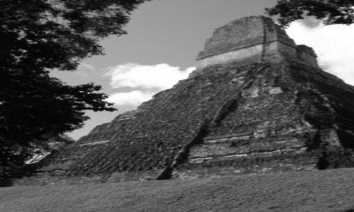 GWATEMALA / brak / Tikal /Gwatemala/ / Tikal - fragment
