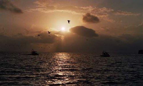 Zdjecie GWATEMALA / brak / Livingston / Golfo de Honduras