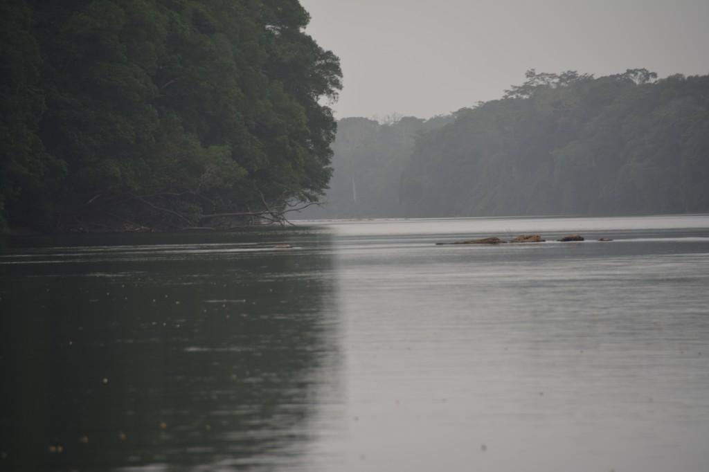 Zdjęcia: Park Narodowy Monte Alen, Centro Sur, Rzeka Mbini, GWINEA RÓWNIKOWA