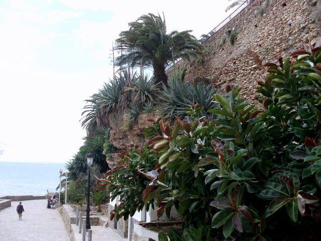 Zdjęcia: Miasteczko Nerja, Andaluzja-Costa del Sol, Andaluzja-Neria, HISZPANIA