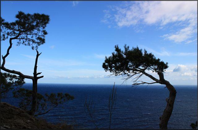 Zdjęcia: północno-wschodnia część wyspy, Majorka, 47 ?, HISZPANIA