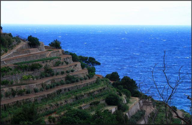 Zdjęcia: północno-wschodnia część wyspy, Majorka, schodami do... morza, HISZPANIA