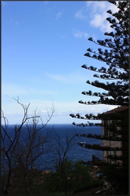 Zdjęcia: północno-wschodnia część wyspy, Majorka, widoczek, HISZPANIA