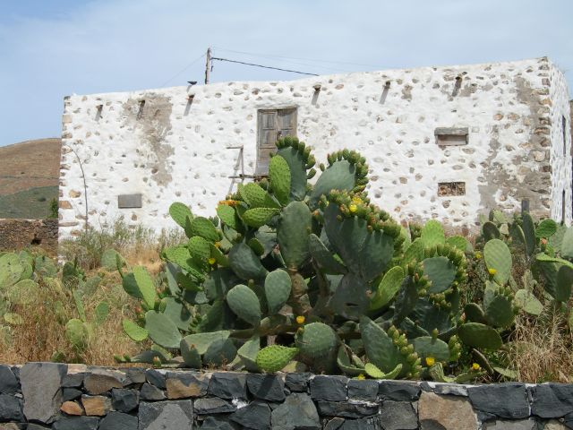 Zdj�cia: Betancuria, Fuerteventura, Wiosna, HISZPANIA