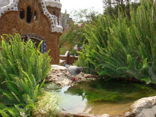Zdjęcia: Park Guell, Barcelona, wodopój, HISZPANIA