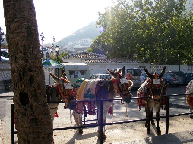 Zdjęcia: Mijas, Andaluzja, Miejscowe taxi, HISZPANIA