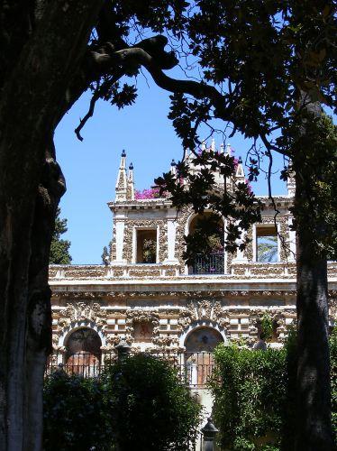 Zdjęcia: Sewilla, Andaluzja, Alkazar - ogrody, HISZPANIA
