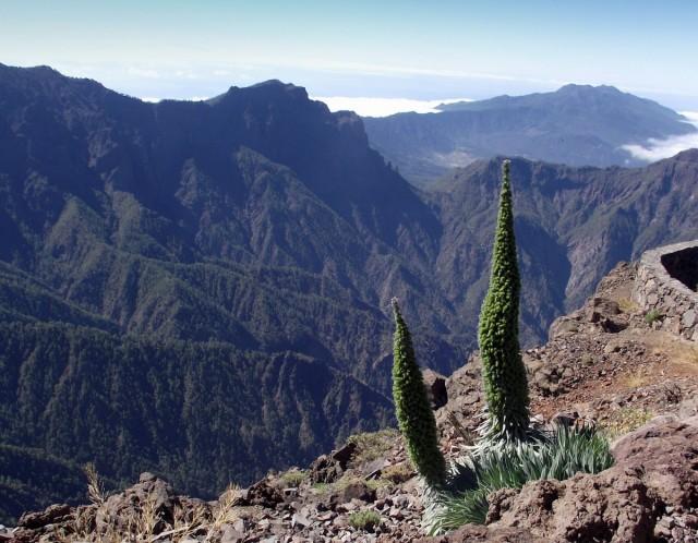 Zdjęcia: La Palma, Wyspy Kanaryjskie, Roque de los Muchachos 2369m n.p.m., HISZPANIA
