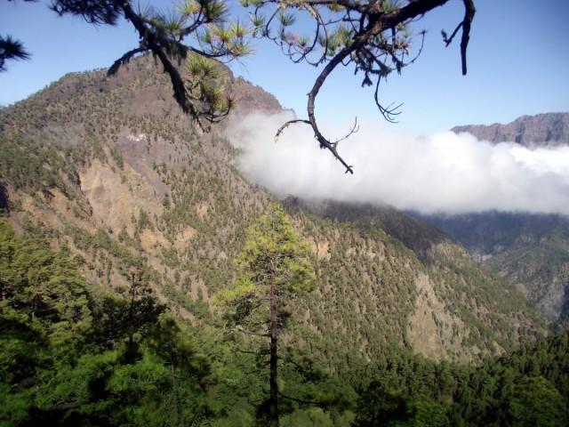 Zdjęcia: La Palma, Park Narodowy Caldera de Taburiente, Wyspy Kanaryjskie, Pico Bejenado 1854m n.p.m., HISZPANIA