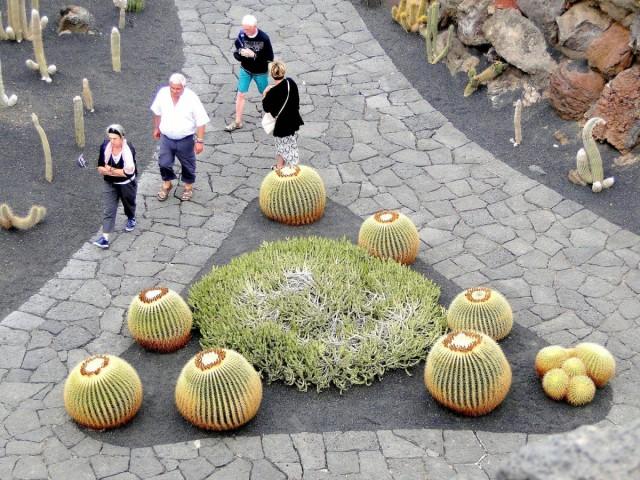 Zdjęcia: Lanzarote, Wyspy Kanaryjskie, W kaktusowym ogrodzie., HISZPANIA
