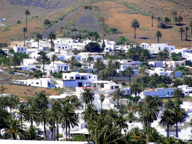 Zdjęcia: Lanzarote, Wyspy Kanaryjskie, W Dolinie Tysiąca Palm., HISZPANIA