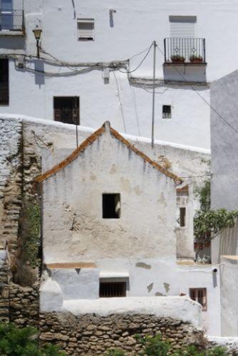 Zdjęcia: Jerez, Andaluzja, Jerez, HISZPANIA