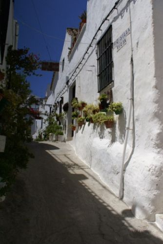 Zdj�cia: Jerez, Andaluzja, Jerez, HISZPANIA