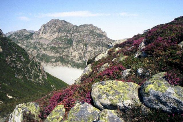Zdjęcia: Kordyliera Kantabryjska, Kantabria, Wrzosowe wzgórza, HISZPANIA
