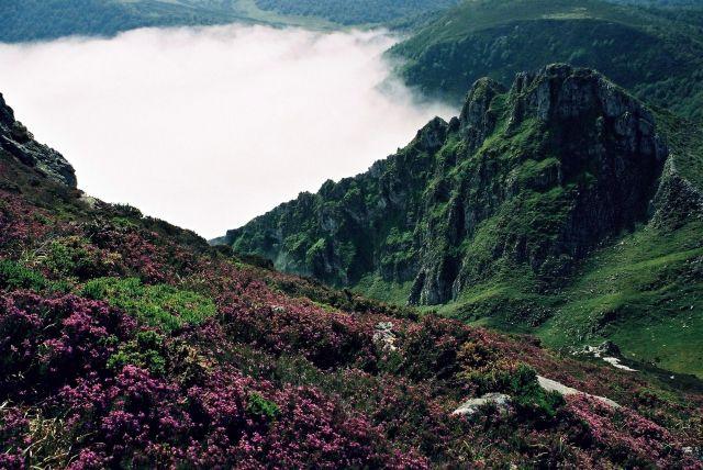 Zdjęcia: główny grzbiet Kordyliery Kantabryjskiej, dzień drogi na południowy zachód od Puerto del P, Asturia, zielona Asturia, HISZPANIA