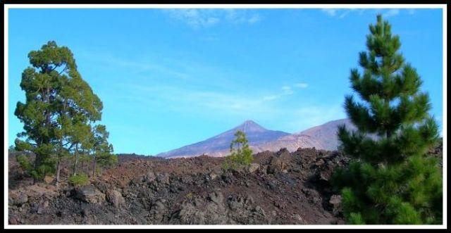 Zdjęcia: Teneryfa, El Teide, HISZPANIA