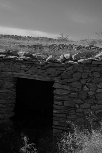 Zdjęcia: okolice soportujar, andaluzja, owczarnia , HISZPANIA