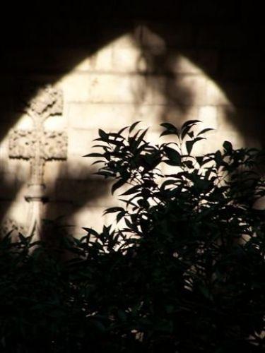 Zdjęcia: Katedra, Katalonia, BArcelona, Katedra, HISZPANIA