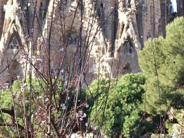 Zdjęcia: Barcelona, Katalonia, GAudi, HISZPANIA