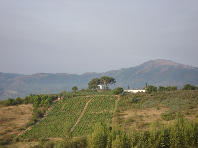 Zdjęcia: Bierzo, Kastylia, camino de Santiago, HISZPANIA