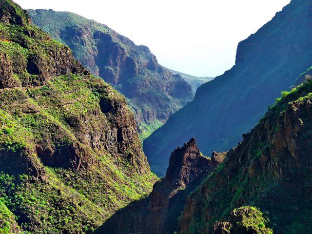 Zdjęcia: Guayadeque, Gran Canaria, Barranco de Guayadeque, HISZPANIA