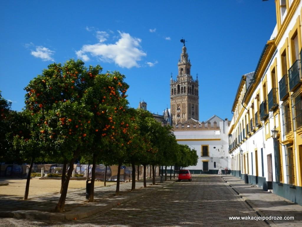 Zdjęcia: Andaluzja, Sewilla, HISZPANIA
