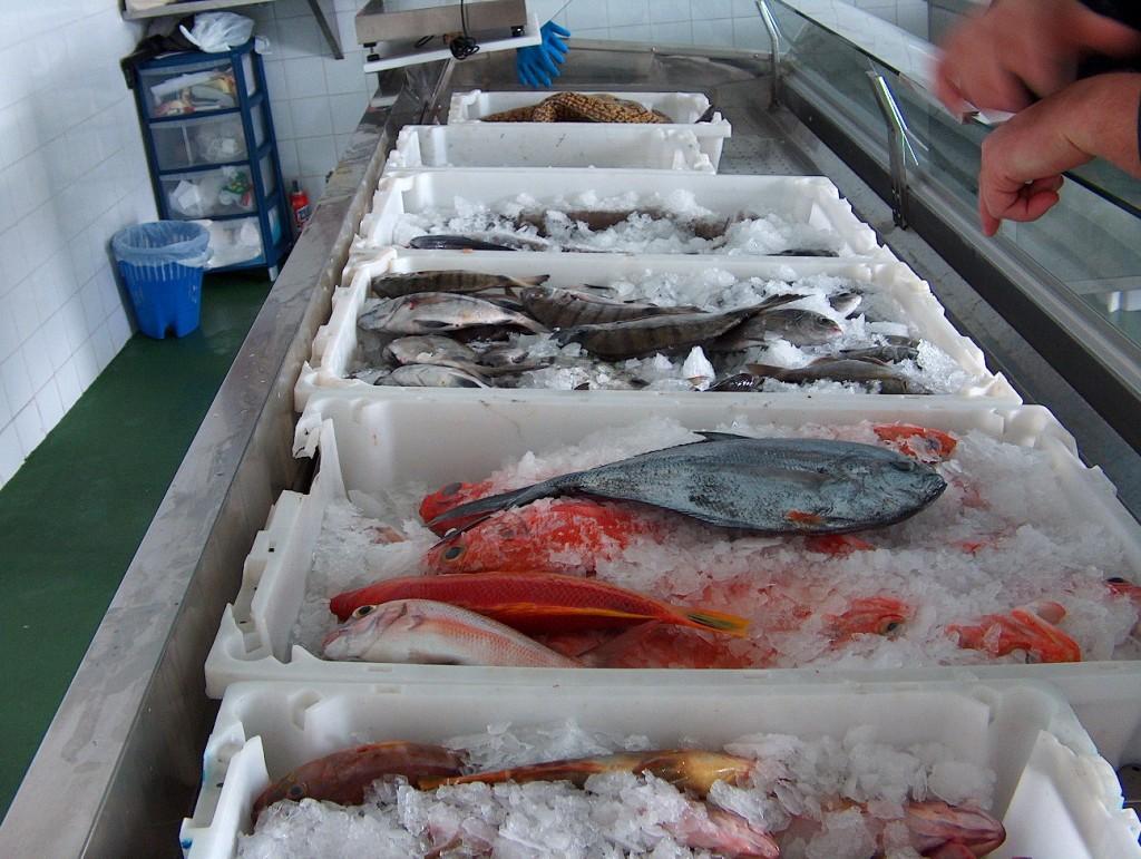 Zdjęcia: Fuertaventura, Fuertaventura, Gotowe do sprzedaży.., HISZPANIA