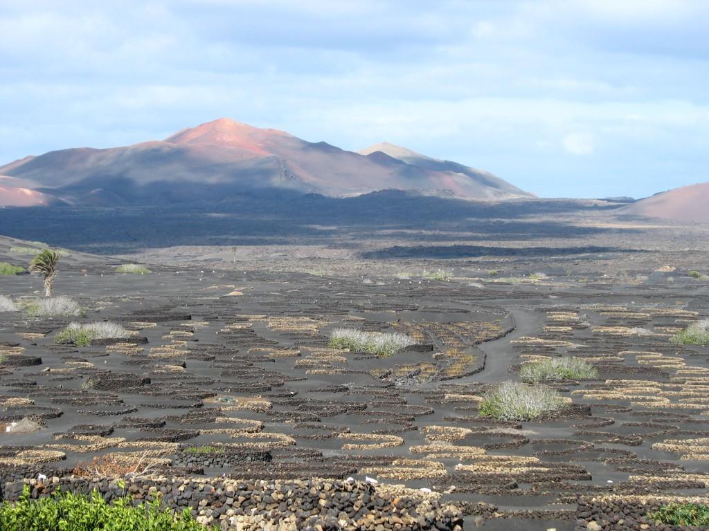 Zdjęcia: Dolina La Geria, Lanzarote, Przestrzeń na wulkanie, HISZPANIA