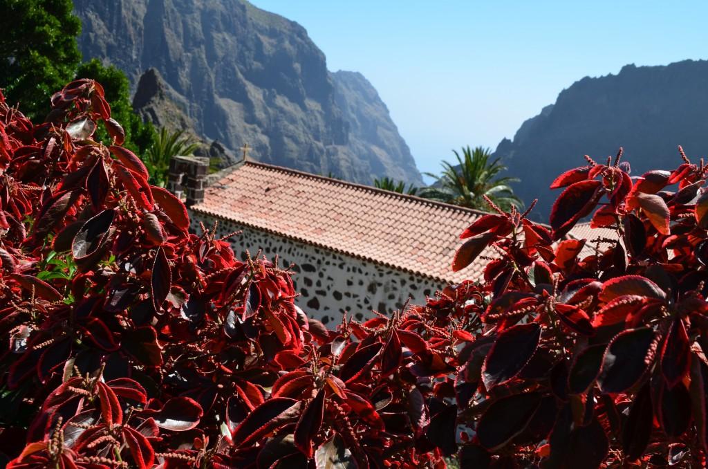 Zdjęcia: Masca, Teneryfa-wyspy kanaryjskie, Teneryfa, HISZPANIA