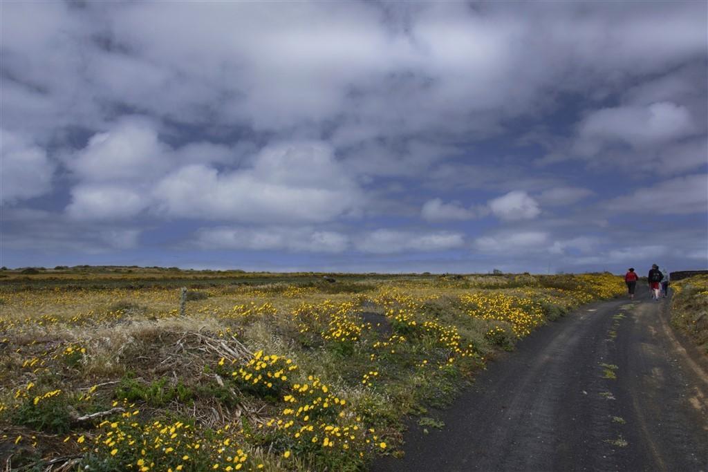 Zdjęcia: okolice Hoya de la Pila, Lanzarote, przed siebie, HISZPANIA