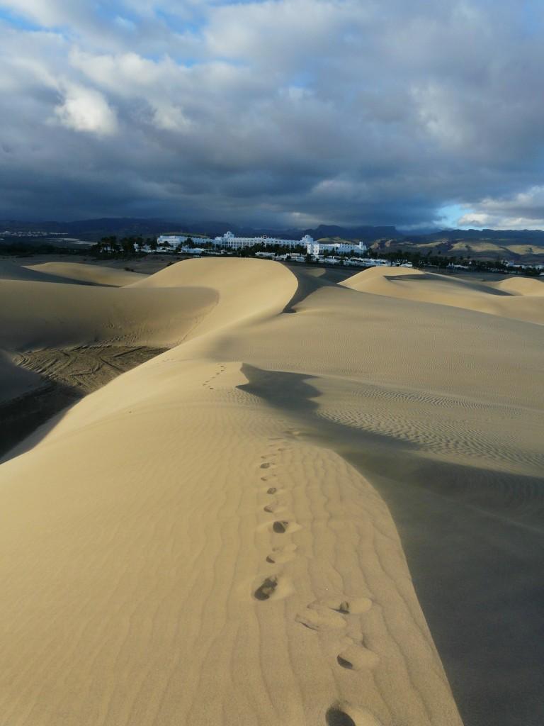 Zdjęcia: okolice Maspalomas, Gran Canaria, oaza..., HISZPANIA