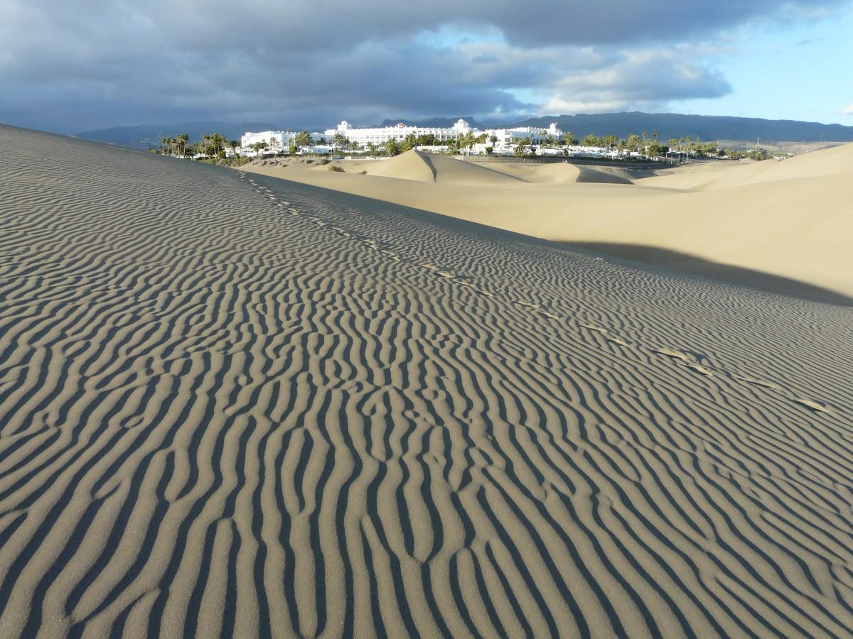 Zdjęcia: okolice Maspalomas, Gran Canaria, oaza2, HISZPANIA