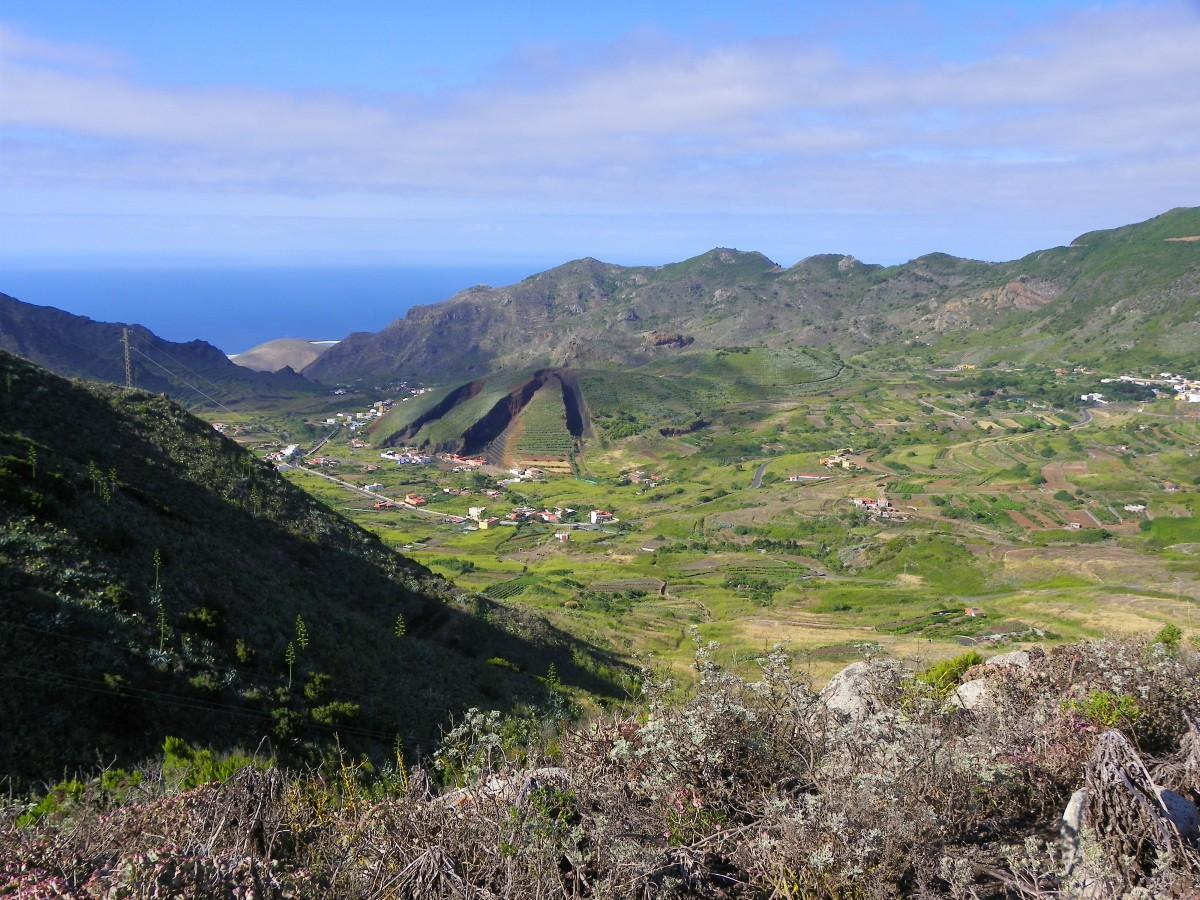 Zdjęcia: Tenerife, Tenerife, Kanaryjski pejzaż, HISZPANIA