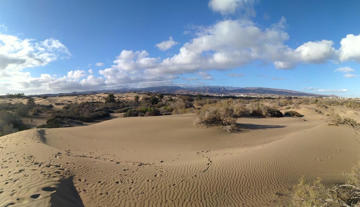 Zdjęcia: Dunas de Maspalomas, Gran Canaria, Gran Canaria, HISZPANIA