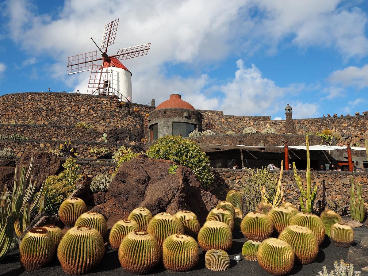 Zdjęcia: Lanzarote, Wyspy Kanaryjskie, Ogród kaktusów, HISZPANIA