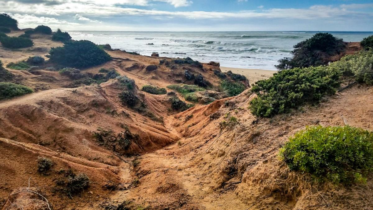 Zdjęcia: Playa Sancti Petri, Andaluzja, +20 na rozgrzanie :), HISZPANIA