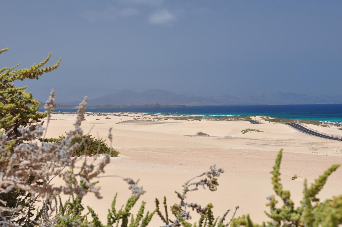 Zdjęcia: wydmy, fuerteventura, mała pustynia, HISZPANIA