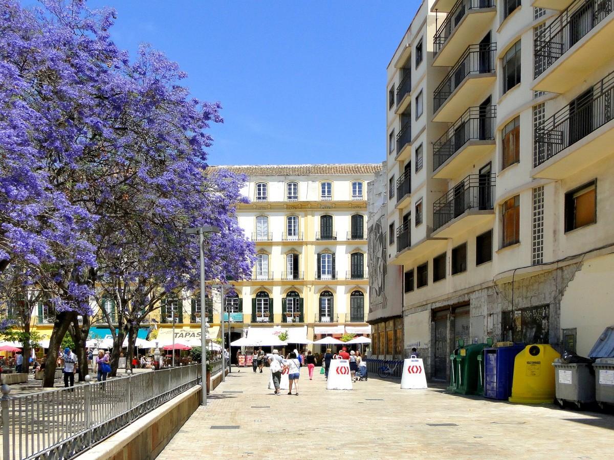 Zdjęcia: Malaga, Andaluzja, Wiosna w Maladze., HISZPANIA