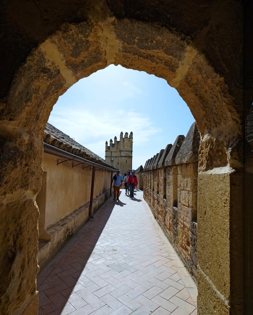 Zdjęcia: Kordoba, Andaluzja, W drodze na zamek, HISZPANIA