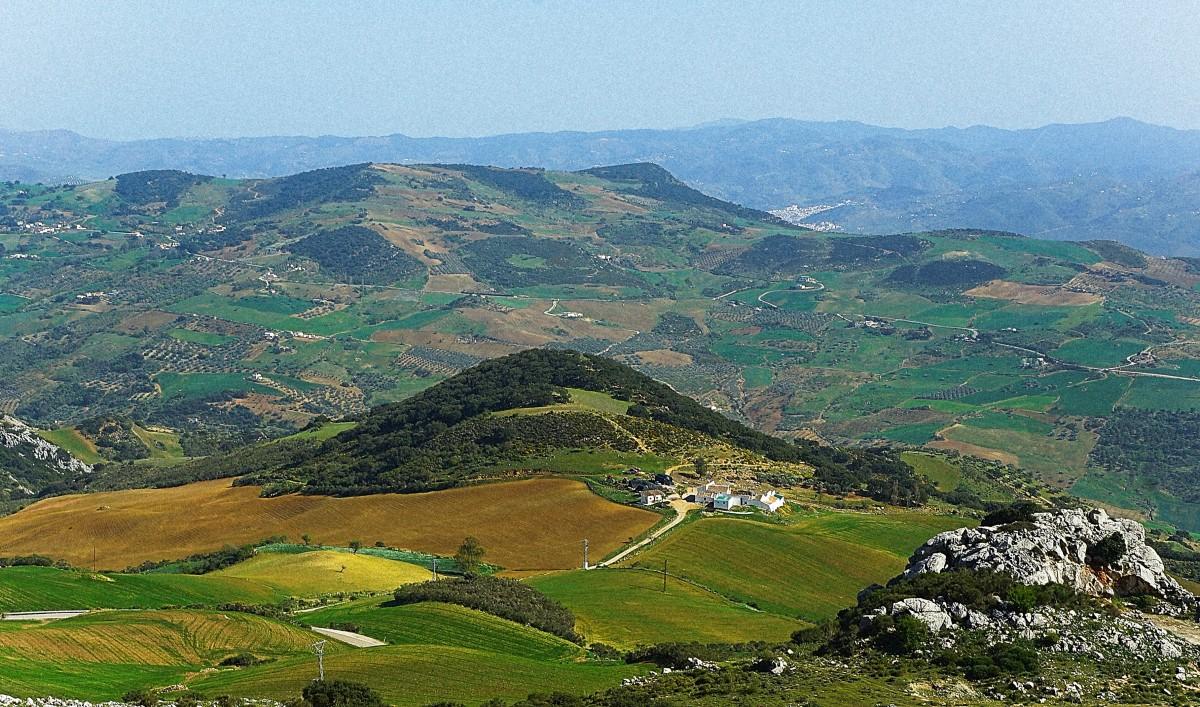 Zdjęcia: El Torcal de Antequera, Andaluzja, W drodze do skałek, HISZPANIA