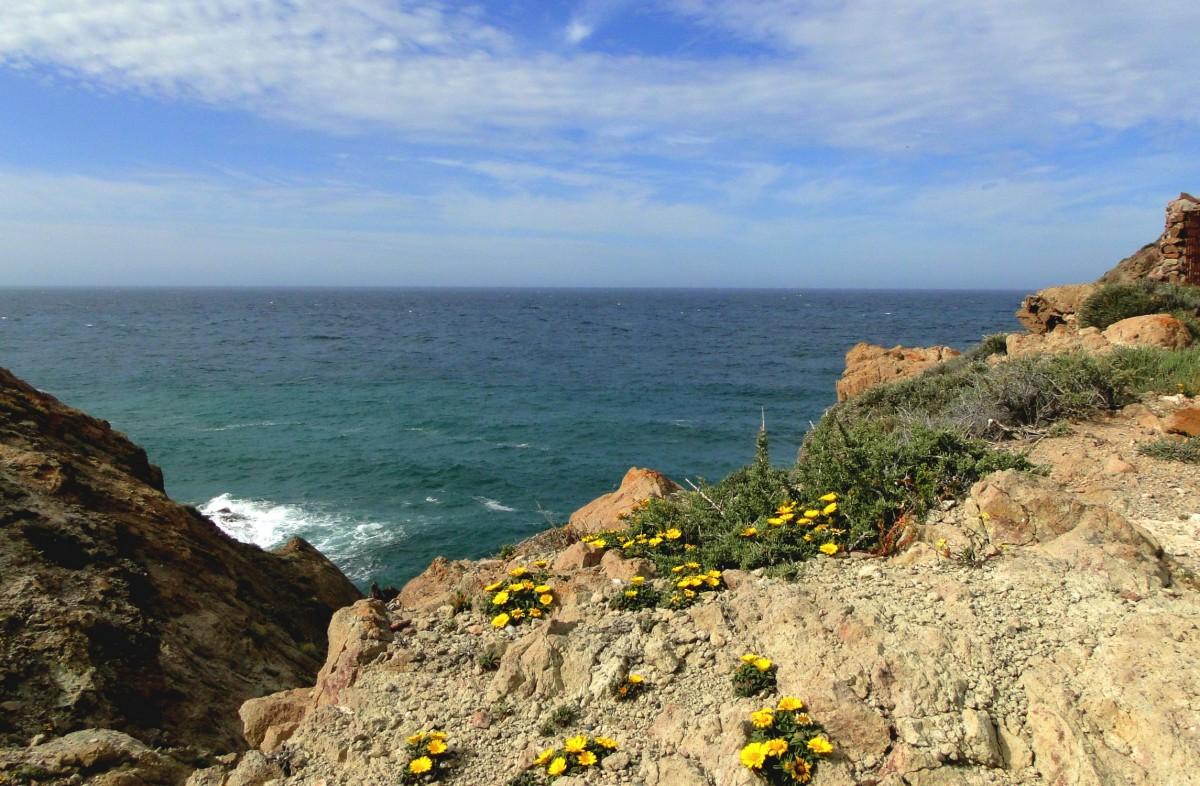 Zdjęcia: Cabo de Gata, Andaluzja, Na przylądku Cabo de Gata, HISZPANIA