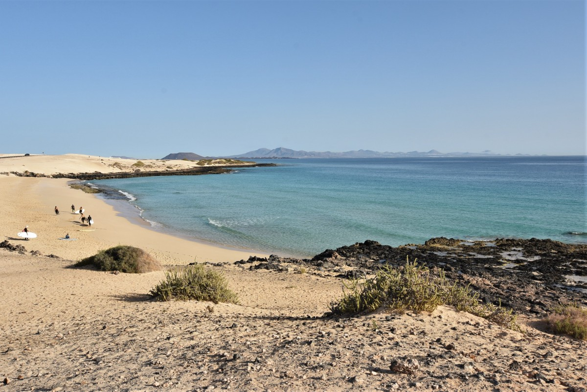 Zdjęcia: Corralejo, Fuertaventura, Corralejo, wydmy, HISZPANIA