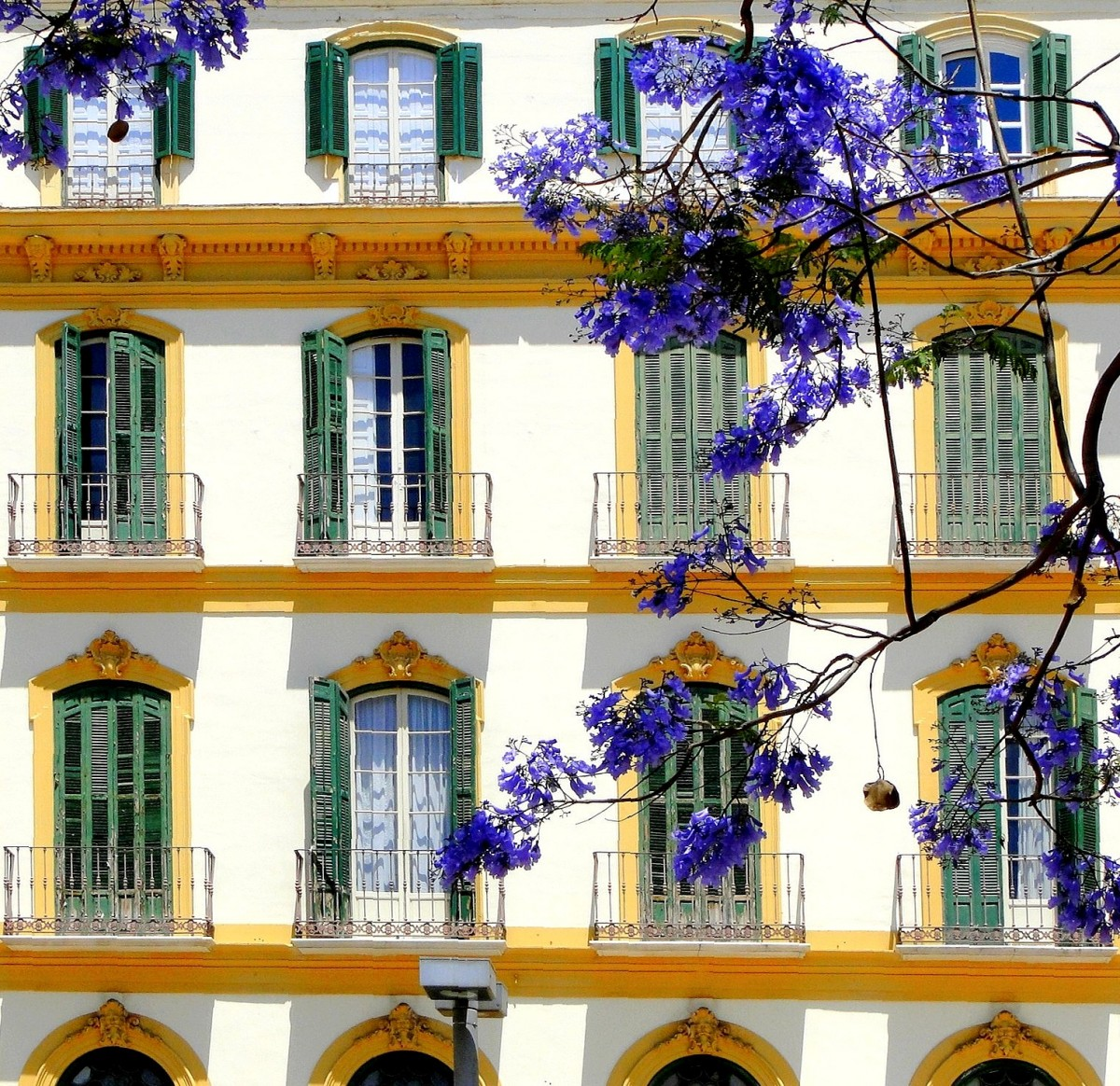 Zdjęcia: Malaga, Andaluzja, Wiosna w Maladze, HISZPANIA