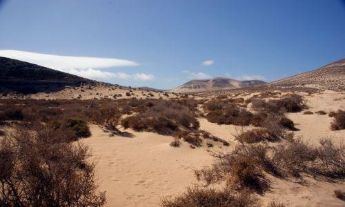 Zdjęcie HISZPANIA / Fuerteventura / plaże południowe / Fuerta