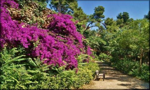 HISZPANIA / Katalonia / Barcelona - Park Güell / Bajkowo w Parku Güell